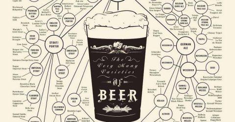 Diagrama-Variedades-de-Cerveja