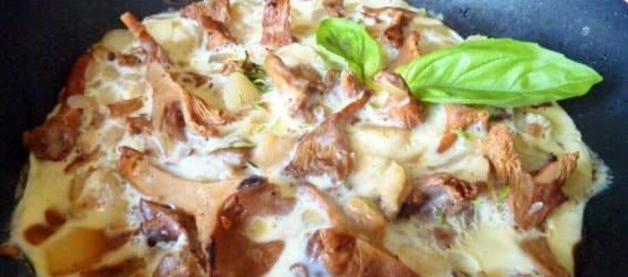Omelete-de-Cogumelos-Chanterelle
