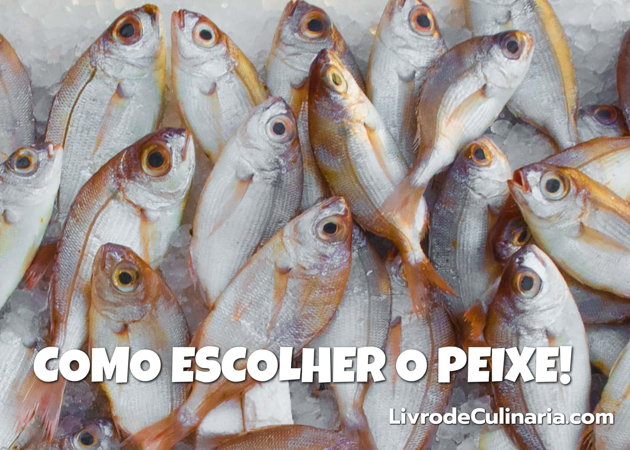 Como-Escolher-Peixe
