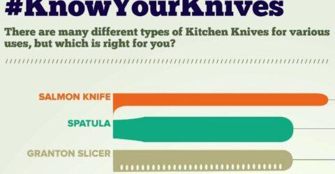 Infografia-Diferentes-Tipos-de-Faca